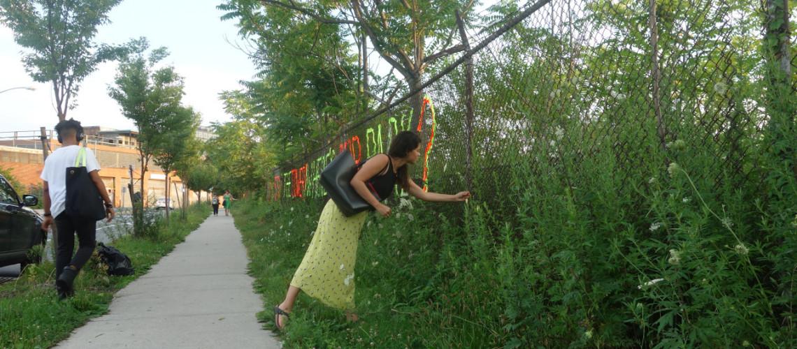 Ridinhii: Bushwick Inlet Park
